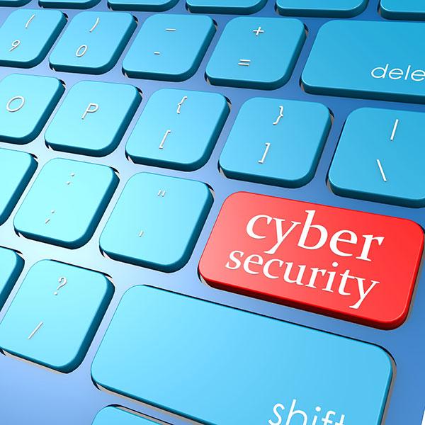 Wie garantieren wir Sicherheit im Netz?